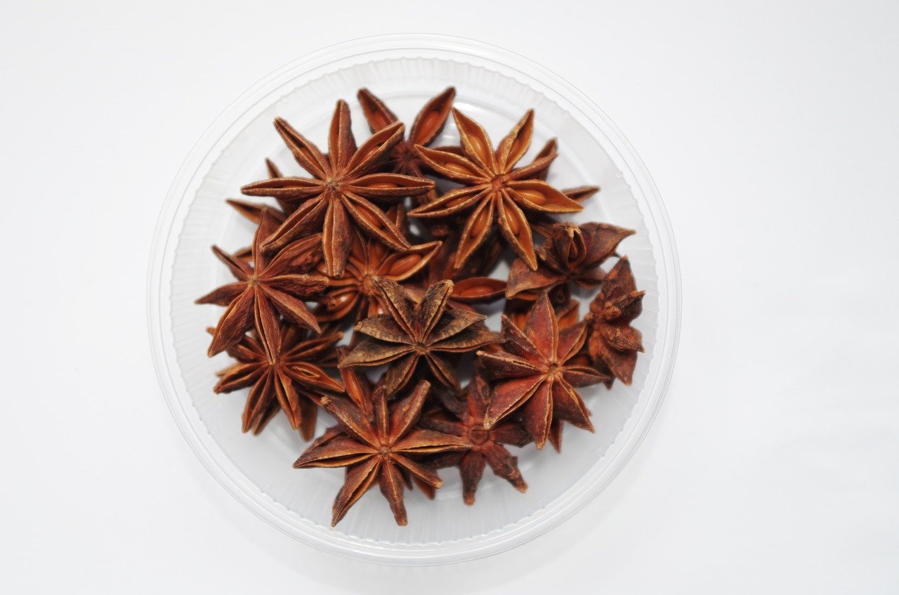 L'anice stellato. Fascino esotico e aspetto regale
