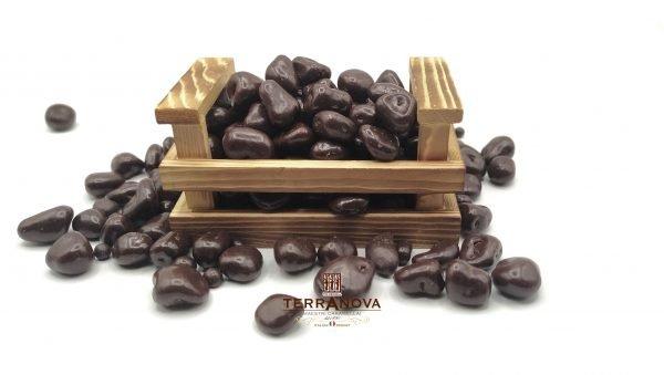 Praline di zenzero ricoperto di cioccolato fondente monorigine ecuador 74% terranova dragèe